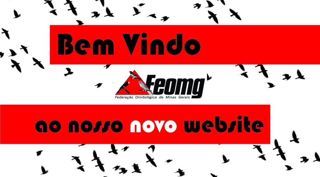 Novo website FEOMG.COM.BR